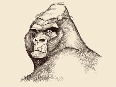 Angry Bear Sketch